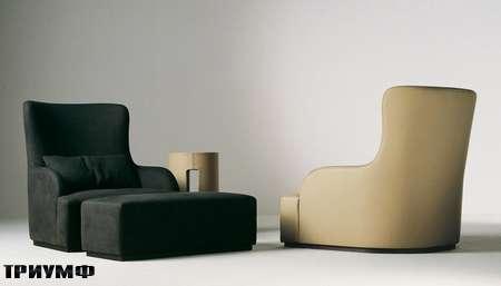 Итальянская мебель Meridiani - кресло Liu skin