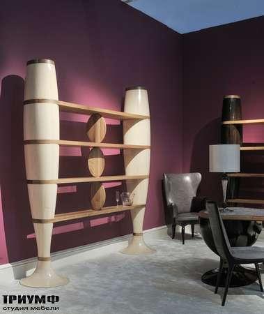 Итальянская мебель Annibale Colombo - Design Collection шкаф