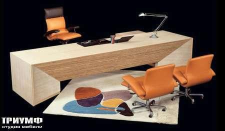 Итальянская мебель Il Loft - стол и кресло riga scrivani