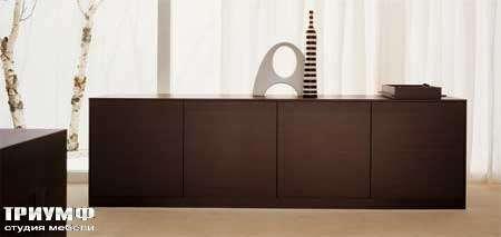 Итальянская мебель Map - Комод Bidue с распашными дверьми венге