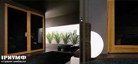 Итальянская мебель Map - Шкаф Inside Dream раздвижные двери, стекло