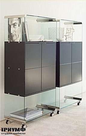 Итальянская мебель Gallotti & Radice - Шкаф Box