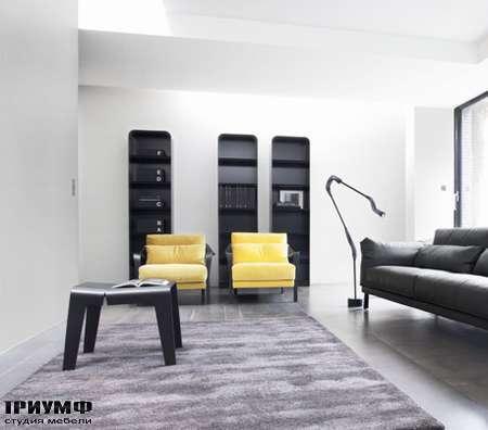 Итальянская мебель Ligne Roset - кресло Cityloft